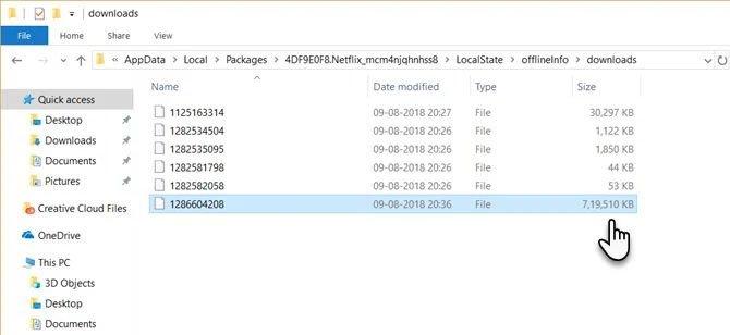 netflix download folder