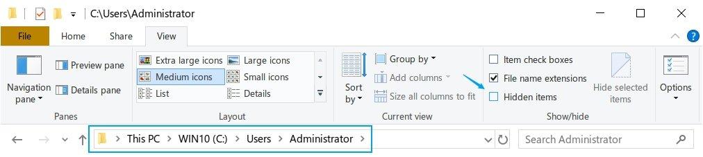 Windows User Directory - View Hidden Items