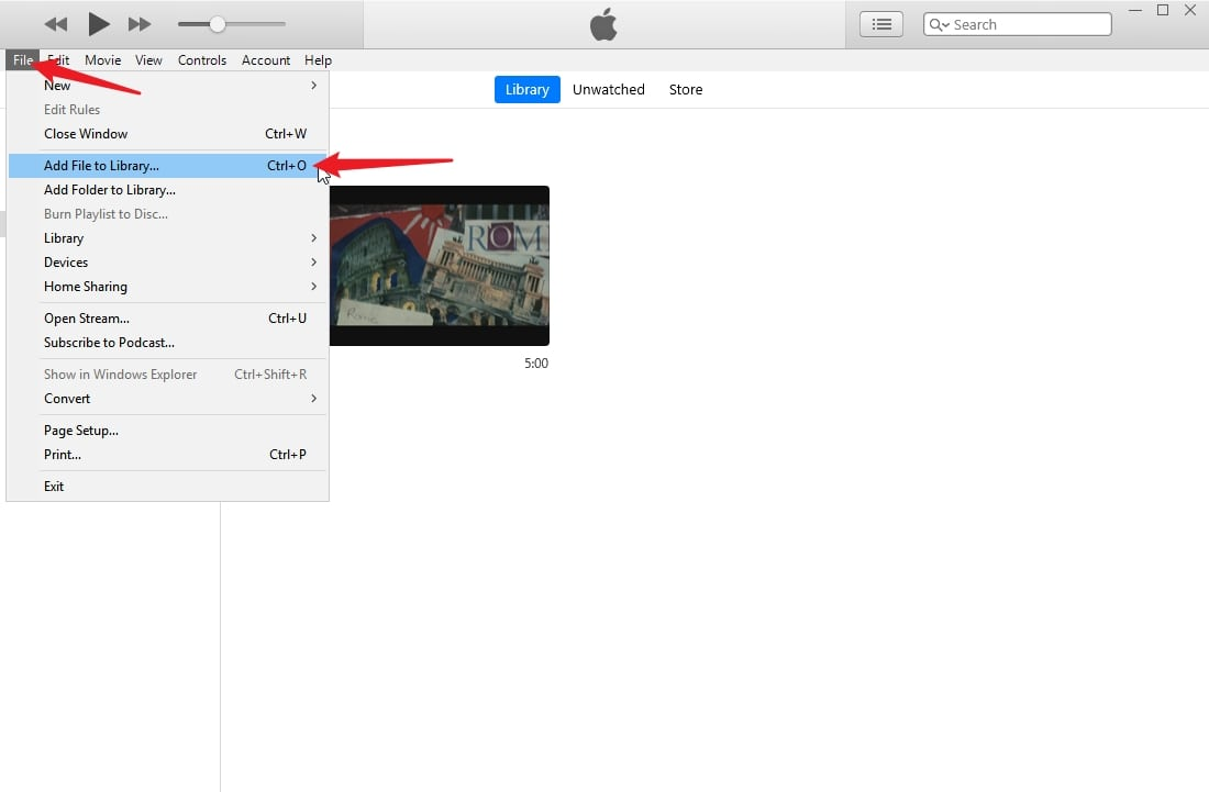 Importing DVD to iTunes