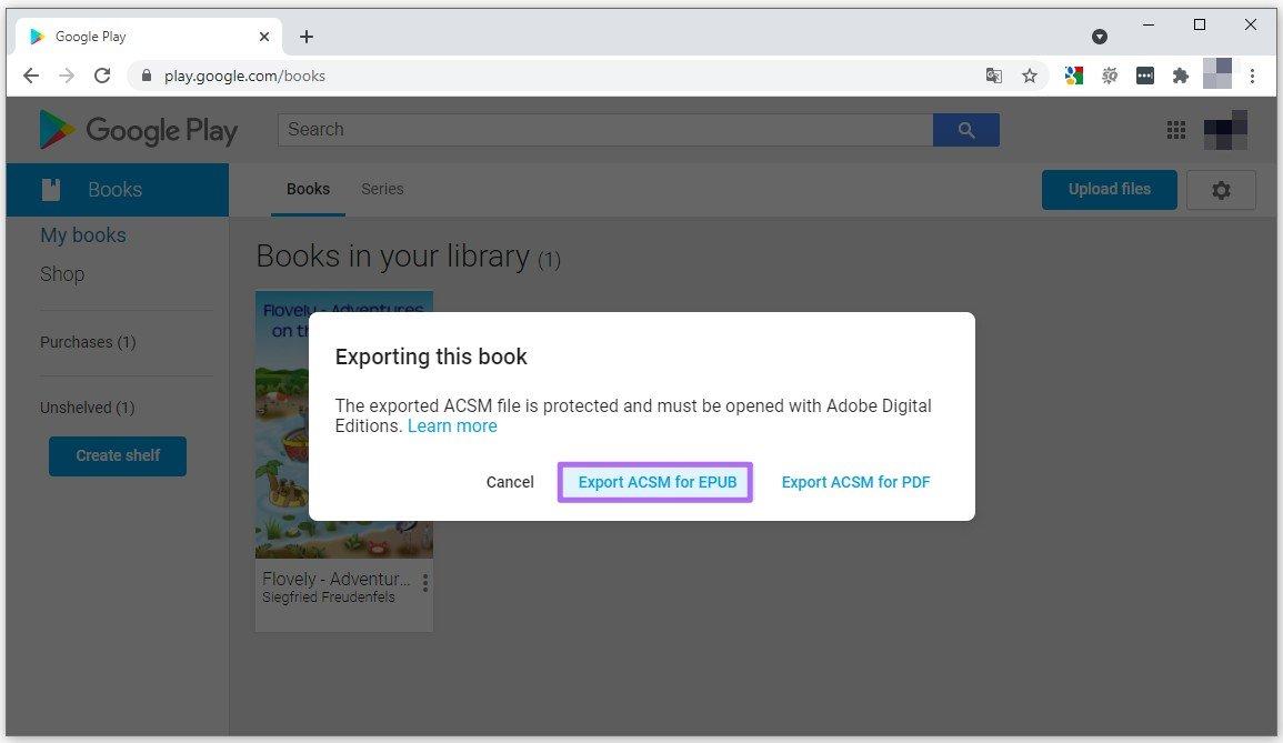 Export Google eBooks to PC